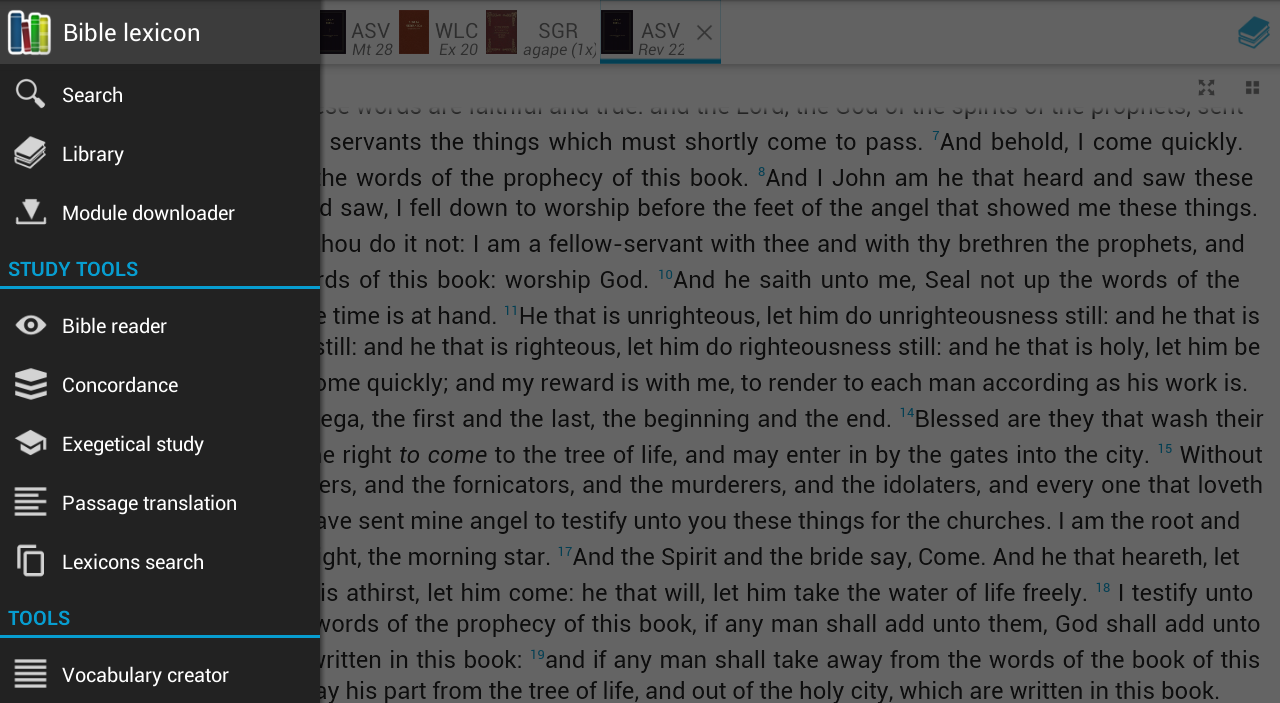 Bible study (Bible lexicon)- screenshot