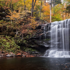 Harrison Wright Falls by Michael Sharp - Landscapes Waterscapes ( luzerne county, pa, waterfall, fall foliage, pennsylvania, harrison wright falls 27', united states, ricketts glen state park )