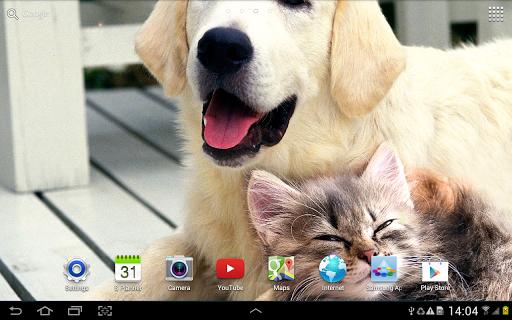 Cat Live Wallpaper 1.0.8 screenshots 11