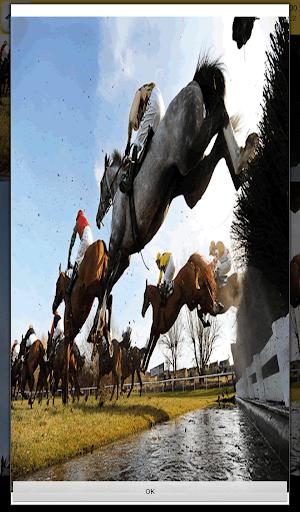Equestrian Games