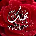 مسجات وصور الحب icon