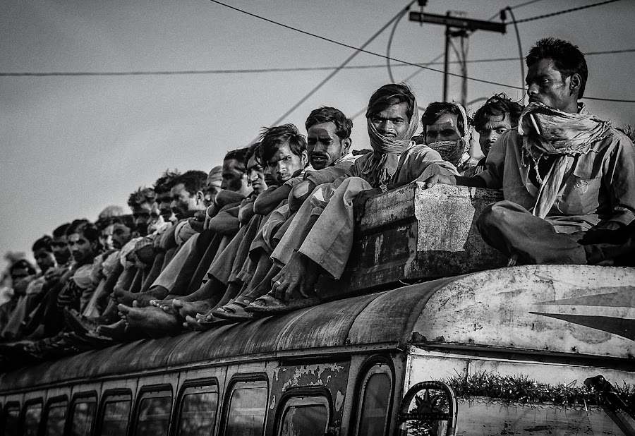 First class by Dimitar Pavlov - Transportation Other ( rajasthan, india, transportation, roads )