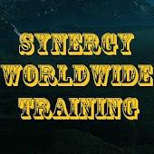 In Synergy Worldwide ?
