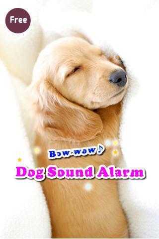 Bow wow Dog sound alarm