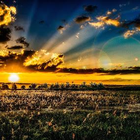 Bananna Lake-Lakeland by Chris Thomas - Landscapes Sunsets & Sunrises ( sky, sunset, lake, rays, lakeland )