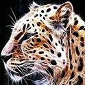 3D Leopard 18 logo