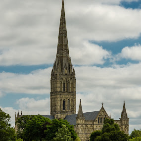 Salisbury Cathedral by Mike Hayter - Buildings & Architecture Places of Worship ( salisbury, england, cathedral, worship, tallest spire )