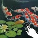 Magic touch: Koi fish & lotus icon