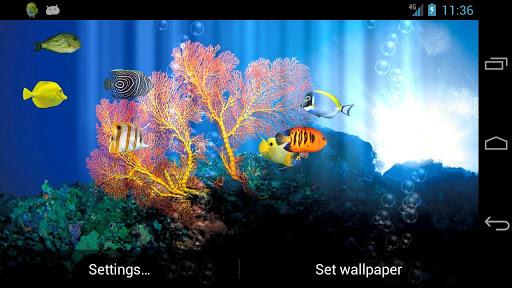 Fish Aquarium Free