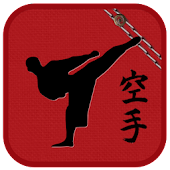 Shotokan karate in the pocket