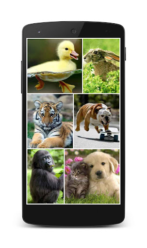 Puzzlera Animals