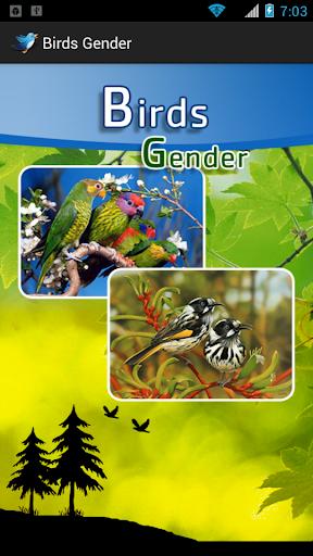 鳥ジェンダーと着メロ
