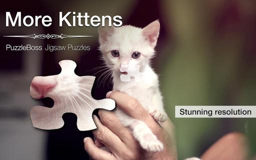 More Kitten Jigsaw Puzzles
