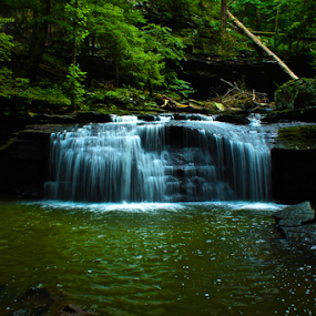 Cloudland Canyon State Park by Jermaine Pollard - Landscapes Waterscapes ( water, trenton, outdoorsm hiking, blue, green, waterfall, georgia, trees, rocks,  )