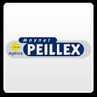 MOYNAT-PEILLEX IMMOBILIER icon