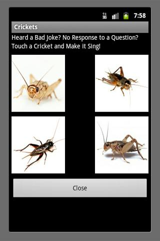 Bad Joke Crickets Sound- screenshot