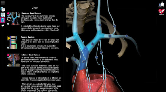 Anatomy Learning - 3D Atlas - Apps on Google Play