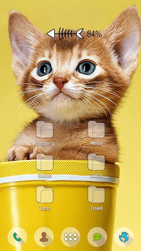 玩免費個人化APP|下載黃貓小貓的馬克杯主題 app不用錢|硬是要APP
