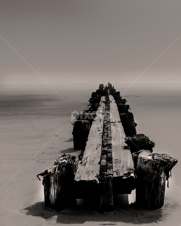 Fog on Folly by Kevin Senter - Black & White Landscapes ( nature, folly beach, folly pier, landscapes, south carolina, charleston south carolina )
