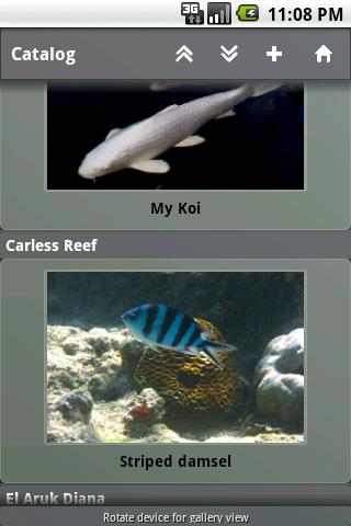 Fishes- screenshot