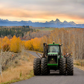 Harvest in the Fall by Shelly Hendricks - Transportation Other ( , fall, color, colorful, nature )