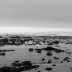 Rocks In The Sea by Leanne Oosthuizen - Black & White Landscapes ( water, waves, bw, dramatic, sea, beach, rocks )