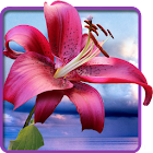 Blumen. Magic Touch Tapete icon