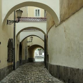 Fish Street by Donat Piber - City,  Street & Park  Street Scenes ( fish, street, ljubljana )