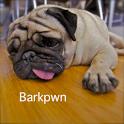 Barkpwn logo