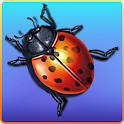 Bug Smasher icon