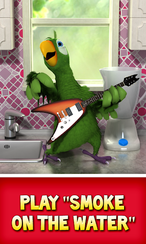 Talking Pierre the Parrot Android App Screenshot