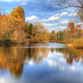 Steele Road Pond by JERry RYan - Landscapes Waterscapes (  )