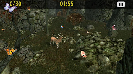 Butterflies Catch Craze 3D 1.0 screenshot 6195