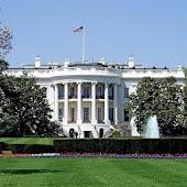 White House Flashlight