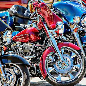 harley by Jon Radtke - Transportation Motorcycles ( harley davedison,  )