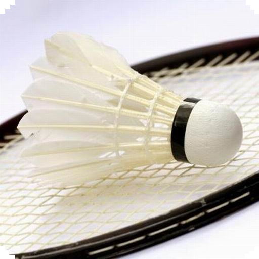 Badmintonclub Ieder voor Zich 運動 App LOGO-APP試玩