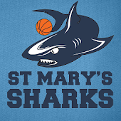St Marys Sharks Basketball