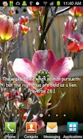 Screenshot of Bible Scripture Flowers LWP