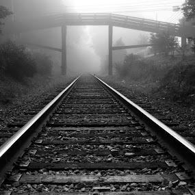 Foggy Morning Tracks by George Holt - Black & White Buildings & Architecture ( train tracks, pedestrian bridge, monochrome, b&w, black and white, black & white, white, tracks, foggy, fog, foggy morning, bridge, mono, black, gloomy,  )