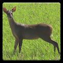 Deer Hunting Calls logo