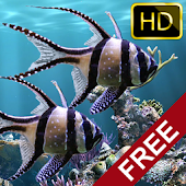 The real aquarium HD - Live Wallpaper