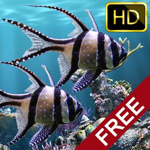 real aquarium M3NMP5wigrOQ0Vr5YAP7