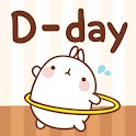 [Sale] Molang Ani D-day Widget icon