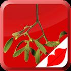 Mistletoe Kiss icon