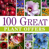 100 Great Plant Offers