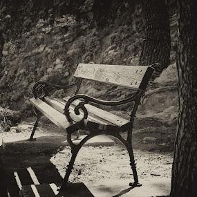 by David Marjanovic - Black & White Objects & Still Life