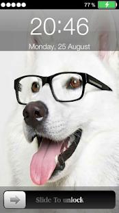 玩免費娛樂APP|下載狗屏幕鎖定 app不用錢|硬是要APP