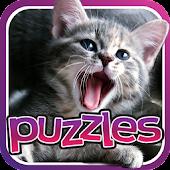 Cat Puzzles - 25+ Free Puzzle