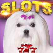Puppy Pay Day Dog Slots Casino