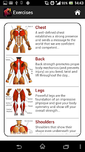 dumbbell muscle workout plan p  apps on google play